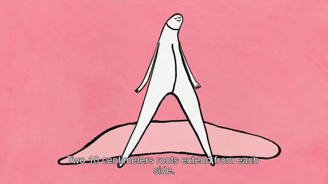 阴蒂有趣科普,女性的阴蒂不仅会硬还会飞!